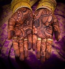 Photo By Arvind Balaraman / freedigitalphotos.net